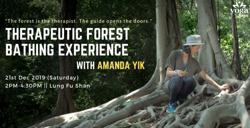 Therapeutic Forest Bathing Experience with Amanda
